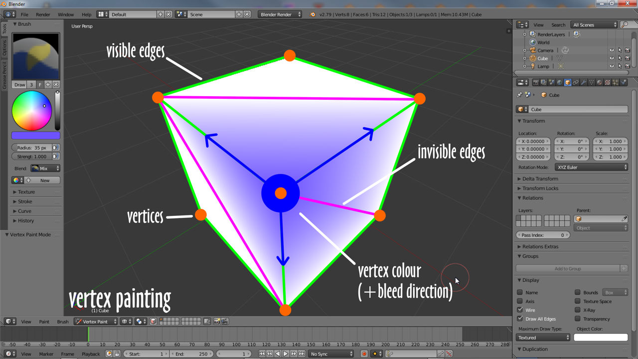 Vertex colour are assigned (painted) to vertices